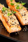 Grilled salmon on black plate. Grilled salmon, sesame seeds  and marjoram on a black plate. Studio shot Royalty Free Stock Photography