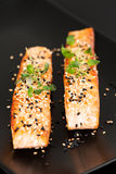 Grilled salmon on black plate vertical Stock Photos