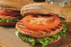 Grilled salmon burgers Stock Images