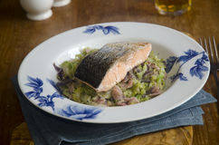 Grilled salmon with cabbage Stock Photos