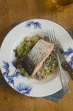 Grilled salmon with cabbage Stock Photography