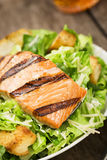 Grilled Salmon Caesar Salad with Croutons Stock Image