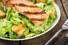 Grilled Salmon Caesar Salad with Croutons Royalty Free Stock Photography