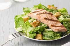 Grilled Salmon Caesar Salad with Croutons and Parmesan Royalty Free Stock Photo