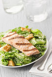 Grilled Salmon Caesar Salad Royalty Free Stock Photos