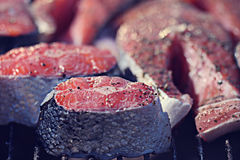 Grilled salmon close up Stock Images