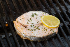 Grilled salmon decorated with a sliced lemon fruit on a grill Royalty Free Stock Photos