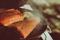 Grilled Salmon. Salmon filets on top of a bbq stock images