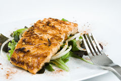 Grilled salmon fillet Stock Photography