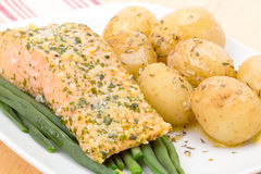 Grilled salmon fillet Royalty Free Stock Images