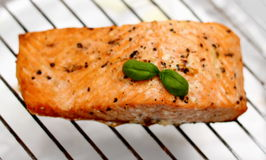 Grilled salmon fillet with basil on grill, soft focus Stock Photography