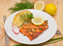 Grilled salmon fillet. Stock Image