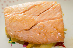 Grilled salmon. Salmon fillet grilled with french fries Royalty Free Stock Images