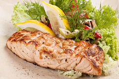 Grilled salmon fillet with fresh salad on the plate. Royalty Free Stock Images