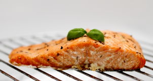 Grilled salmon fillet on grill, soft focus Royalty Free Stock Photo