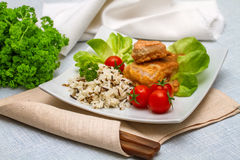 Grilled salmon fillet with rice Royalty Free Stock Images