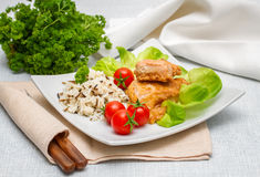 Grilled salmon fillet with rice Stock Photography