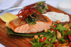 Grilled Salmon Fillet Stock Photo