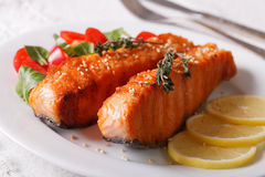 Grilled salmon fillet with sesame and lemon closeup on a plate. Royalty Free Stock Photography
