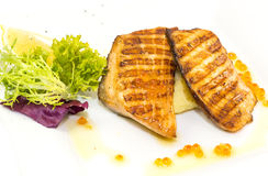 Grilled salmon fillet Royalty Free Stock Photos