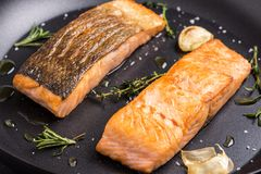 Grilled Salmon Fillets in Frying Pan royalty free stock photo
