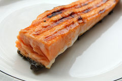 Grilled salmon fillets Stock Image