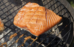Grilled salmon fish fillet barbecue grill cooking. One grilled salmon fish fillet barbecue cooking prepared on bbq grill, close up stock photos