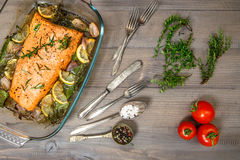 Grilled salmon fish with fresh herbs and spices Stock Images