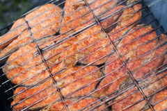 Grilled salmon fish steaks Royalty Free Stock Photos