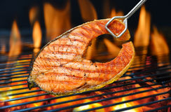 Grilled salmon. On the flaming grill royalty free stock photo