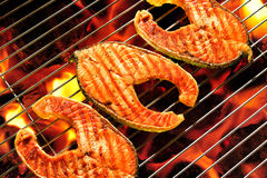 Grilled salmon. On the flaming grill royalty free stock photography