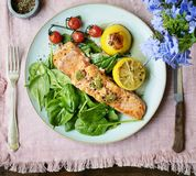 Grilled salmon food photography recipe idea Stock Photography