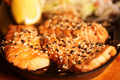 Grilled Salmon with fresh salad Stock Image