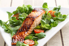 Grilled salmon with honey glaze. Grilled salmon with a honey glaze served on a plate with a bed of lamb's lettuce and tomatoes Stock Images