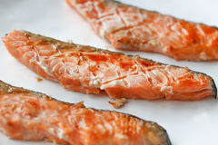Grilled salmon. Grilled salmon in hot stove stock photography