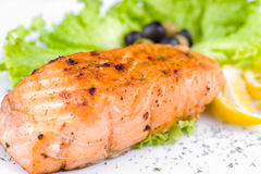 Grilled salmon, macro Stock Image
