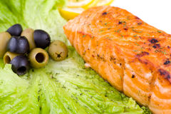 Grilled salmon, macro Stock Photography