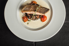 Grilled salmon with rosemary. Fish dish. Close up. Restaurant Stock Images