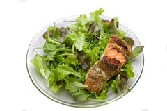 Grilled salmon on salad Royalty Free Stock Images
