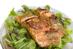 Grilled salmon on salad Royalty Free Stock Photography