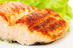 Grilled salmon, salad on plate Royalty Free Stock Images