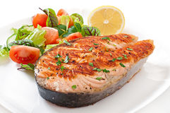 Grilled salmon with salad Stock Photography