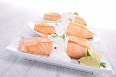 Grilled salmon and sauce Royalty Free Stock Images