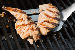 Grilled salmon on a spatula is ready for turning on a grill Royalty Free Stock Images