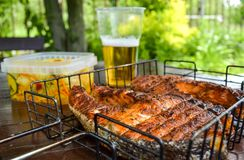grilled salmon steak Γυαλί με την μπύρα Σαλάτα λάχανων Πικ-νίκ στη φύση στοκ φωτογραφίες