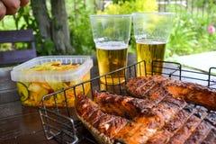 grilled salmon steak Δύο γυαλιά με την μπύρα Σαλάτα λάχανων Πικ-νίκ στη φύση στοκ εικόνα με δικαίωμα ελεύθερης χρήσης
