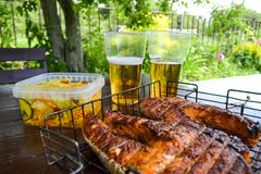 grilled salmon steak Δύο γυαλιά με την μπύρα Σαλάτα λάχανων Πικ-νίκ στη φύση στοκ φωτογραφία