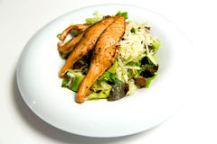 Grilled salmon steak with herbs and vegetables. Salmon steak, stir-fry veggies and herbs. Ready to be served Royalty Free Stock Image
