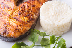 Grilled salmon steak with rice. Recipe background Stock Image