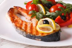 Grilled salmon steak and vegetable salad on a plate close-up Royalty Free Stock Photo